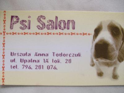 Oglądasz obrazki z tematu: Program partnerski Psiego Salonu oraz kotkowo.pl