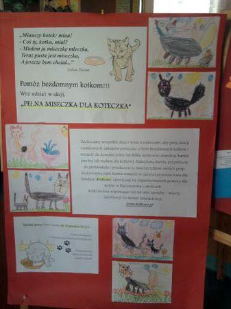 Oglądasz obrazki z tematu: Kotki dziekują dzieciom z Przedszkola nr 55
