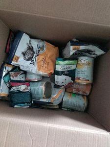 Oglądasz obrazki z tematu:  Kotki dziękują p. Adamowi ze sklepu ZOO YORK na karmę i żwirek:)