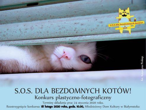 Oglądasz obrazki z tematu: Konkurs plastyno fotograficzny w MDK :)